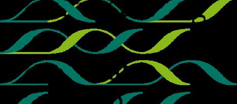 kdfs_logo