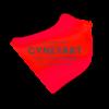 cynetart2016_call for entries